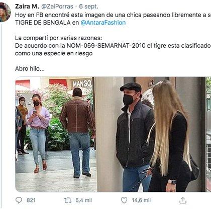 Una usuaria de Twitter denunció en redes sociales a una mujer por pasear un tigre cachorro por la plaza comercial Antara, en Polanco (Foto: Twitter)