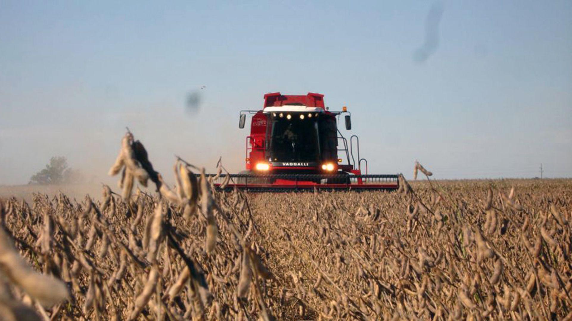 El precio internacional de la soja sigue subiendo e impacta en los valores de la próxima cosecha e ingresos por exportaciones