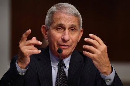 Anthony Fauci testifica ante el comité de Salud, Eduación, Trabajo y Pensiones del Senado (Reuters)