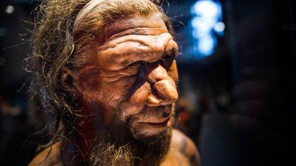 Una representación de un hombre de Neandertal (Shutterstock)