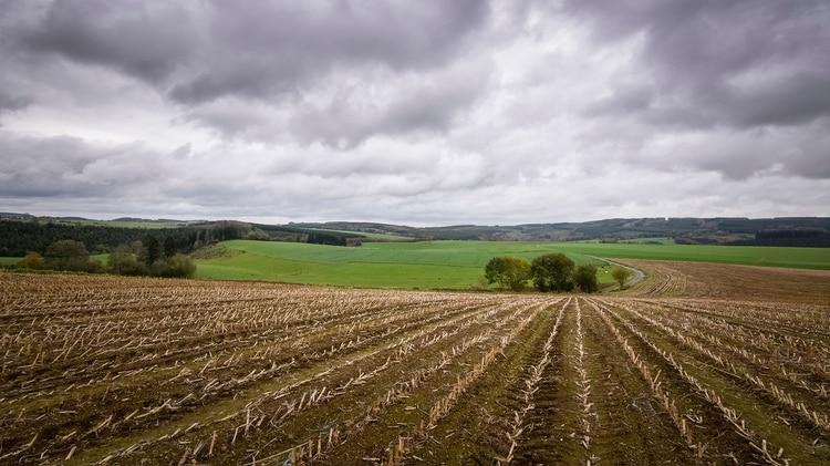 El sector agrícola en Bélgica también se opone (Shutterstock)