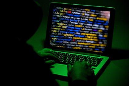 Los sitios malicioso son una forma de obtener datos confidenciales de manera fraudulenta (EFE/Sascha Steinbach/Archivo)
