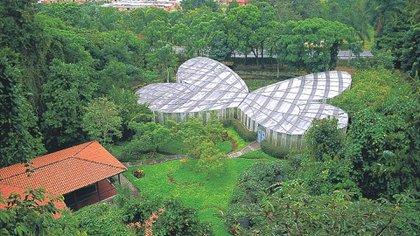 Mariposario, Jardín Botánico del Quindío. Foto: Colprensa