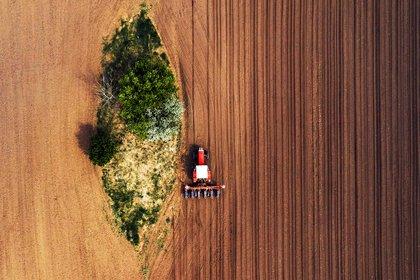 """""""Nuestros 'pilotos automáticos' se conectan con el tractor y su inteligencia artificial aprende de la dinámica de movimiento de la maquinaria, permitiendo que el manejo autónomo sea cada vez más eficiente"""", explicaron desde Campo Preciso"""