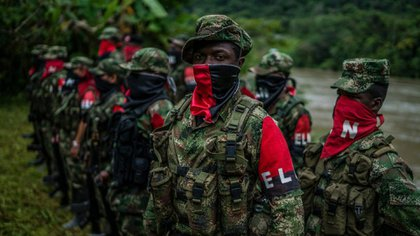 Para el profesor Luis Fernando Trejos el ELN podría considerarse actualmente como una guerrilla binacional pues tiene presencia, control de territorio y de rentas ilegales tanto en Colombia como en Venezuela.