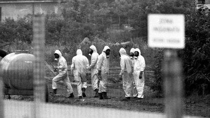 """La catástrofe ambiental fue conocida como el """"desastre de Seveso"""", un incendio industrial ocurrido en una pequeña planta química en la región de Lombardía, Italia"""