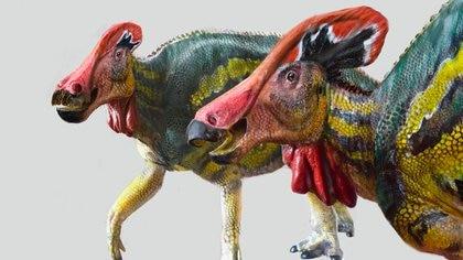 El INAH y la UNAM identificaron una nueva especie de dinosaurio en Coahuila