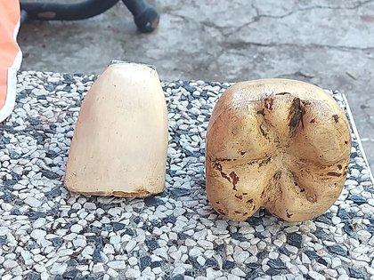 Los dientes del muñeco de King Kong que tiene Venneri