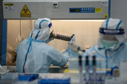 A lab technician wearing a protective suit, left, handles saliva samples for RT-PCR Covid-19 testing at Prenetics Ltd.'s laboratory in Hong Kong, China on Friday, July 31, 2020. Prenetics, along with other Hong Kong labs and hospitals, has been overloaded with people seeking virus tests since the new wave emerged 18 days ago, Chief Executive Officer Danny Yeung said in an interview last month. Photographer: Roy Liu/Bloomberg