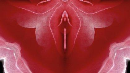 Un estudio publicado en The Journal of Sex and Marital Therapy descubrió que casi el 37% de las mujeres necesitaba estimulación del clítoris para experimentar el orgasmo (Shutterstock)