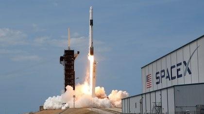El SpaceX Falcon 9 de SpaceX, la empresa espacial de Elon Musk (REUTERS/Joe Skipper/File Photo)