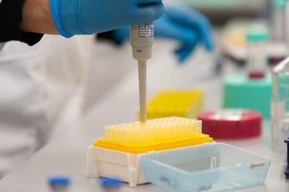 Un hallazgo entre manos que ahora se lanza a la prueba en humanos:  el suero equino terapéutico para tratar pacientes infectados con COVID-19