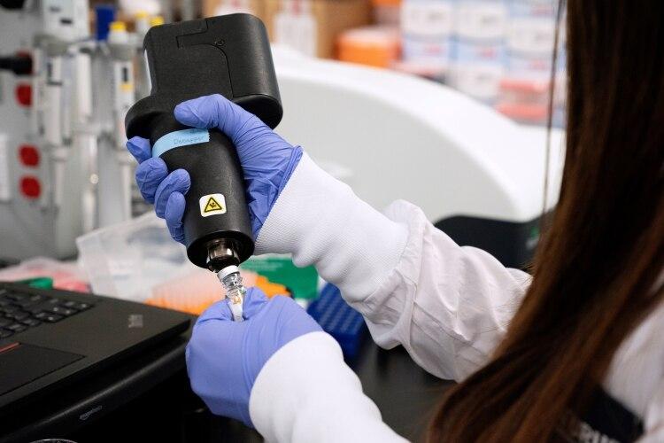 fosfato de cloroquina vs zithromax drogas