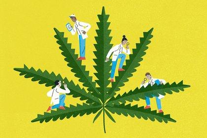 """""""Cero Marihuana durante el embarazo y la lactancia"""", un informe de la SAP que alerta sobre las consecuencias del uso de cannabis durante estas etapas  (Gracia Lam/The New York Times)"""