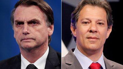 Jair Bolsonaro y Fernando Haddad (REUTERS/Paulo Whitaker/Nacho Doce/File Photos)