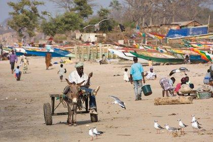 Gracias a sus tierras fértiles la agricultura del país es uno de los elementos claves de su economía, junto con la pesca y el turismo
