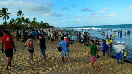 La gente trabaja para eliminar un derrame de petróleo en la playa de Muro Alto en Tamandare, estado de Pernambuco (REUTERS)
