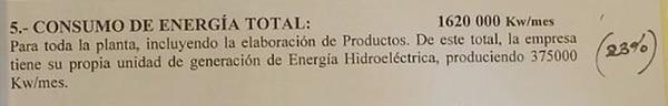 El documento que Molinos Juan Semino presentó ante en ENRE