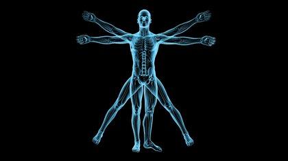 Sólo se conocen 100 casos de difalia, desde que fue reportada por primera vez por un médico suizo en 1609 Shutterstock 162