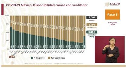 Gráfica sobre la disponibilidad y ocupación de camas con ventilador hasta este día  (Foto: SSA)