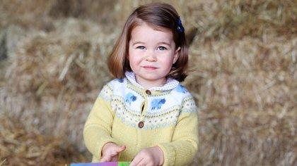 Princess third birthday picture