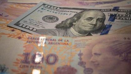 El dólar libre perdió un 23% desde el récord de finales de octubre. (Foto: Franco Fafasuli)