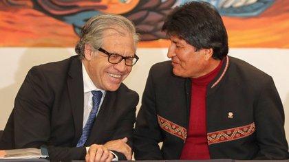 El secretario general de la Organización de Estados Americanos (OEA), Luis Almagro, en una conversación amistosa con Evo Morales en mayo de 2019, cuando le dio su aval para que se presentara a una nueva re-reelección a pesar de que haber perdido un referendo que buscaba habilitarlo. Luego, Terminaron enfrentados cuando la OEA denunció el fraude en las elecciones bolivianas.