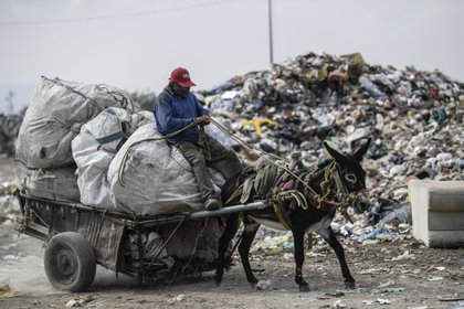 """Un trabajador monta un carro tirado por un burro en el basurero """"Bordo de Xochiaca"""" en Ciudad Nezahualcóyotl, Estado de México el 21 de julio de 2020, en medio de la nueva pandemia de coronavirus. (Foto por PEDRO PARDO / AFP)"""
