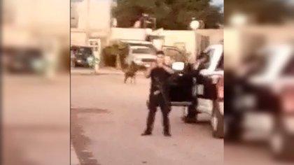 Hasta el momento, la Fiscalía mexiquense descarta que se trate de una jauría (Foto: Captura de Pantalla)
