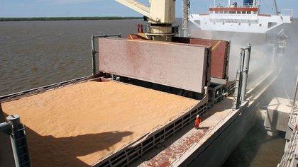 The Rosario Stock Exchange projected income from exports of grains and by-products until March of next year