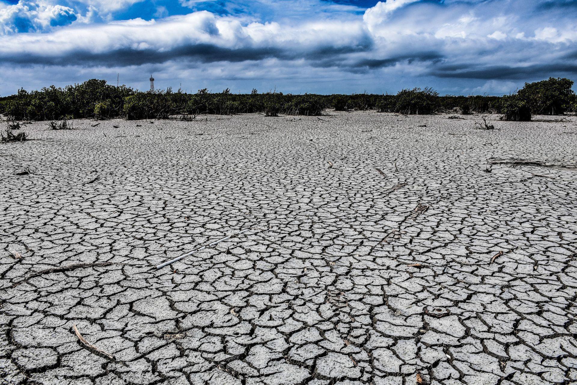La sequía en México - 19042021