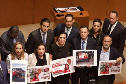 La oposición en el Senado cuestionó la militancia partidista de Rosario Piedra, la nueva presidenta de la CNDH (Foto: Cuartoscuro)
