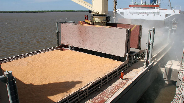 Según un informe privado, más del 65% de las principales empresas exportadoras nacionales son de base agroproductiva (AFP)
