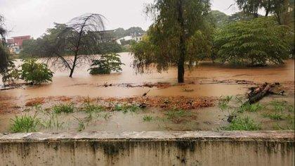 La foto es del malecón de Villahermosa y se puede notar que rebasó a varios árboles de la orilla del río Grijalva, lo cual es un signo inminente de una inundación masiva en todo el estado, publicó un usuario en Twitter Foto: @CarlosPregSanch