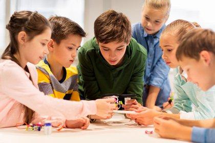 Cómo fomentar el aprendizaje y la innovación (Shutterstock)