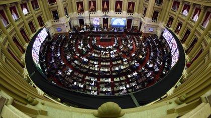 El impuesto a la riqueza obtuvo media sanción en Diputados (Adrián Escandar)