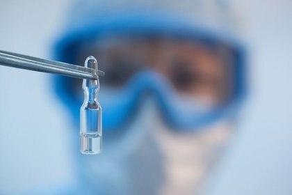 Hace 15 años prácticamente se empezó a trabajar en las vacunas génicas; hasta ahora no hay ninguna aprobada en humanos (Reuters)