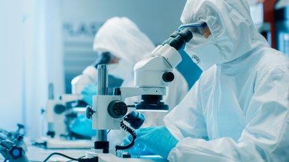 """""""Los propios investigadores reconocieron que se necesitan estudios posteriores para determinar la durabilidad de esta inmunidad"""" (Shutterstock)"""