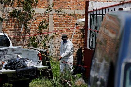 El gobierno busca responder a la creciente presencia del narcotráfico con cinco ejes (Foto: EFE/Francisco Guasco)