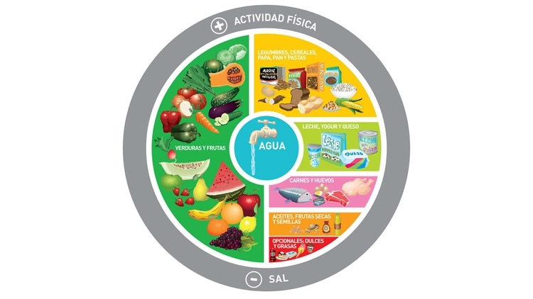 La proporción de cada grupo de alimentos recomendado por las GAPA incluye 50% de frutas y verduras