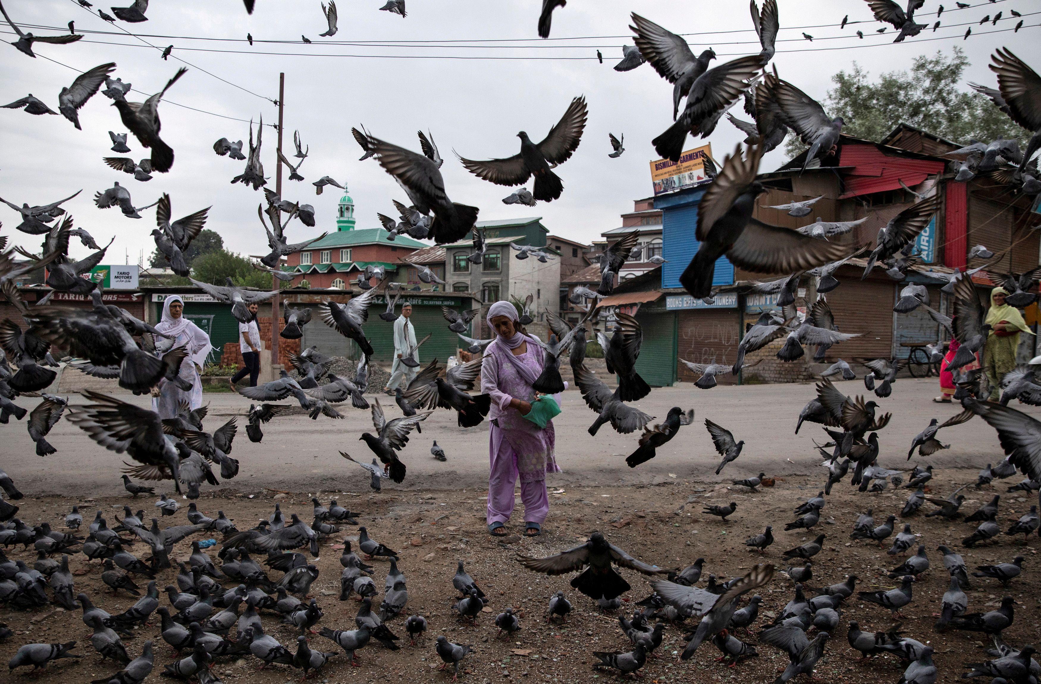 Una mujer de Cachemira alimenta a las palomas en una calle durante las restricciones tras la eliminación del estatus constitucional especial para Cachemira por parte del gobierno, en Srinagar, el 11 de agosto de 2019.
