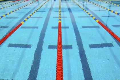 Los natatorios todavía no entraron en la discusión para la reapertura en la Ciudad de Buenos Aires (Shutterstock)