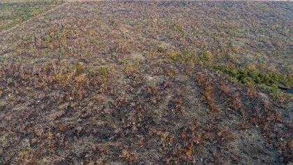 Vista de un área afectada por un incendio, el 20 de agosto de 2019, en el estado de Mato Grosso (Brasil) (EFE/Rogerio Florentino)
