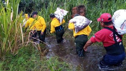 Elementos de Protección Civil ayudan a damnificados en algunas zonas de Chiapas. (Foto: Cuartoscuro)