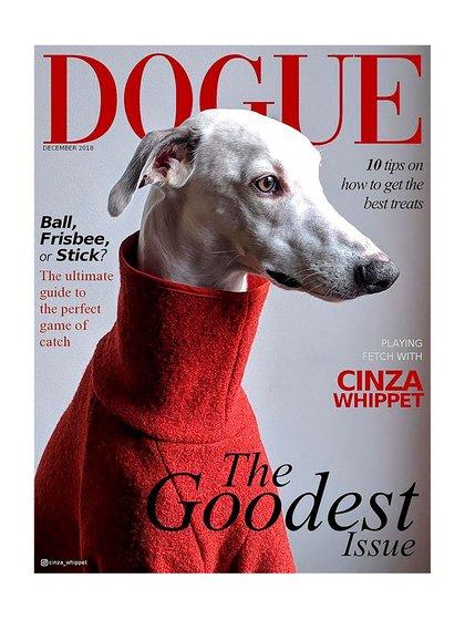 La falsa tapa de Vogue sobre dogecoin que tuiteó Musk