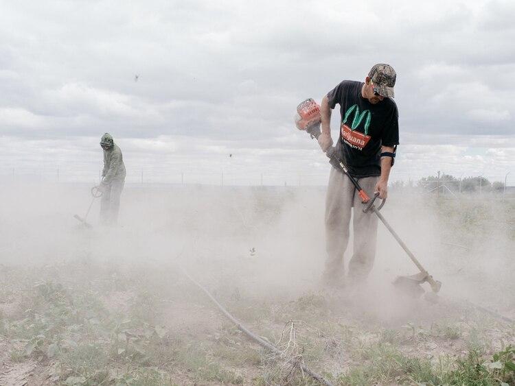 Un sitio de cultivo de Woody Farms, en Pueblo, Colorado (Benjamin Rasmussen para The New York Times)