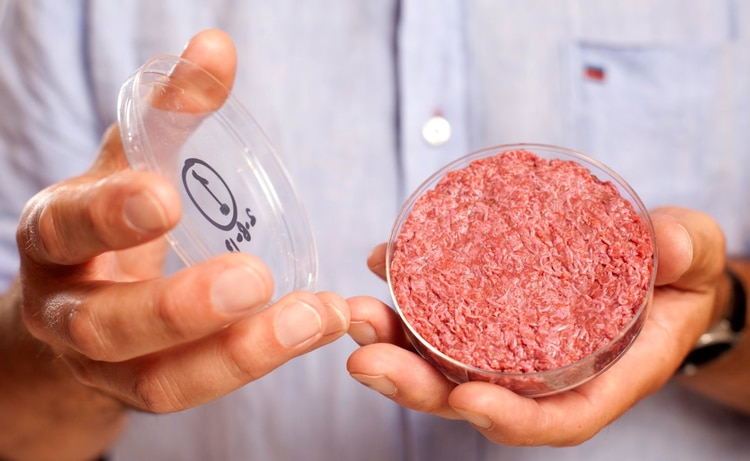 La carne a base de células -a partir de células animales en un laboratorio- aunque probablemente pasen años hasta su disponibilidad en las tiendas, está creciendo también, con estudios que sugieren que los consumidores en los mercados más grandes quieren probarla