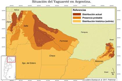 Gentileza Red Yaguareté.