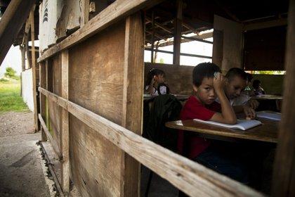 La enseñanza las diversas lenguas nacionales invitaría a aprender también a los niños que no pertenecen a ningún pueblo indígena (Foto: Rashide Frías/Cuartoscuro)