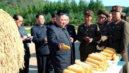 Kim Jong-un en una entrega de alimentos (Captura)